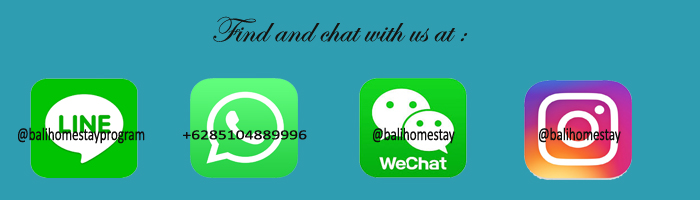 Contact and chat with us